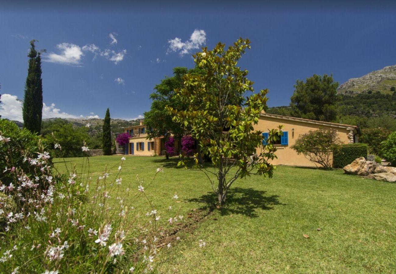 Villa in Pollensa - Villa Son Grua