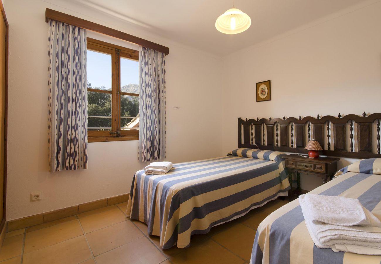 Villa in Pollensa - CAMP REDO