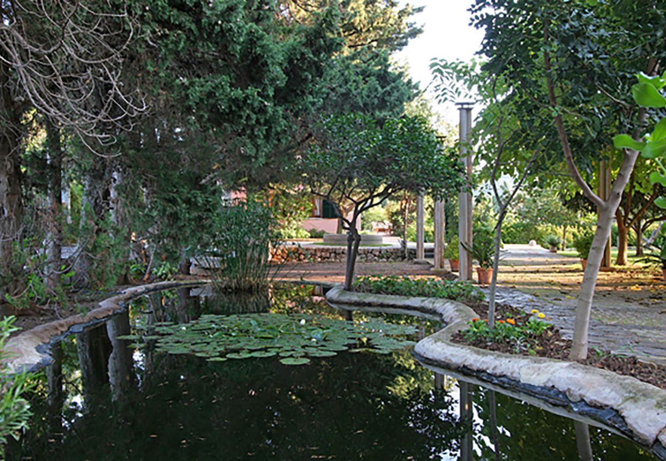 Villa in Pollensa - HORT 3 CAMES