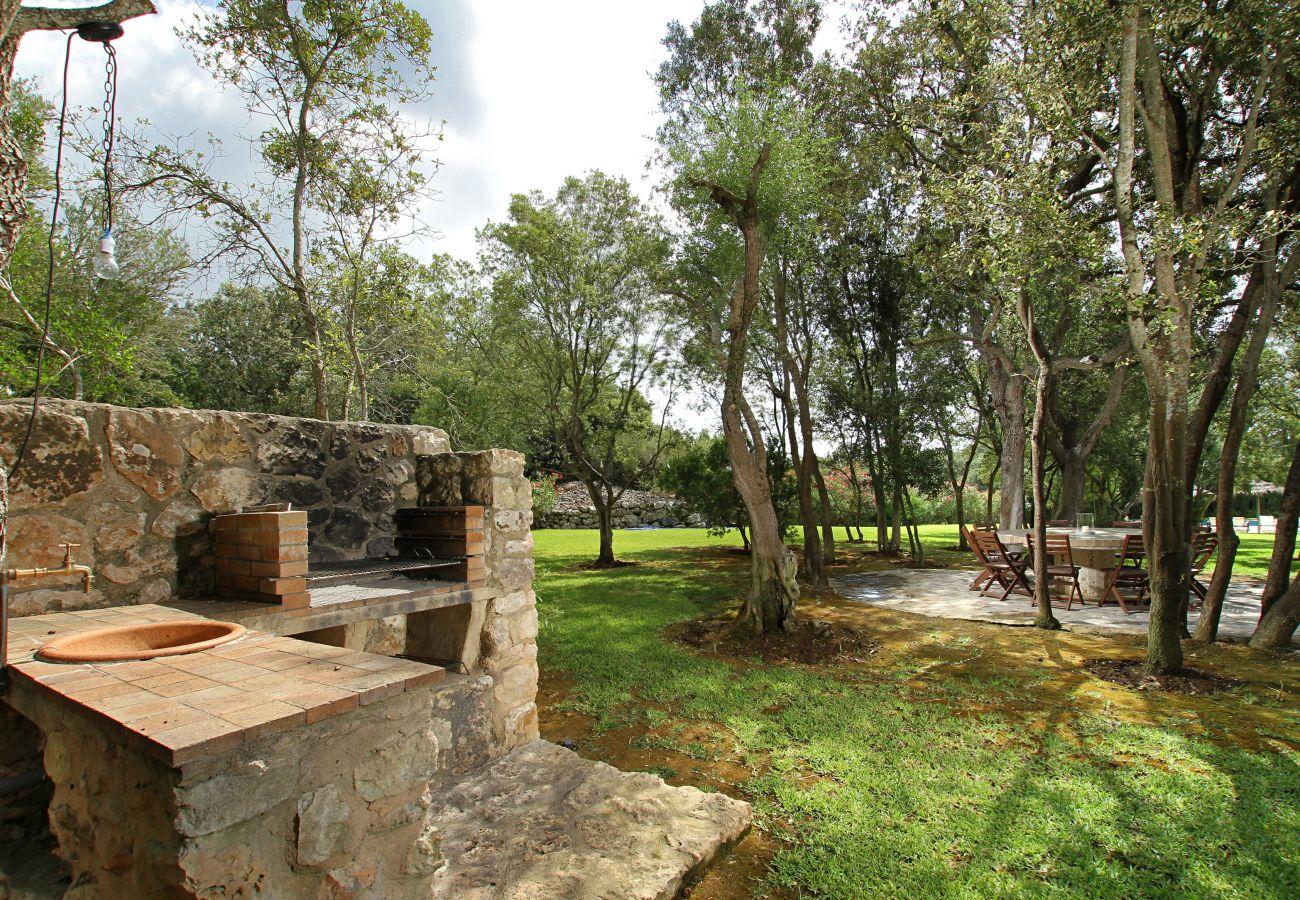 Villa in Pollensa - Eu Romani