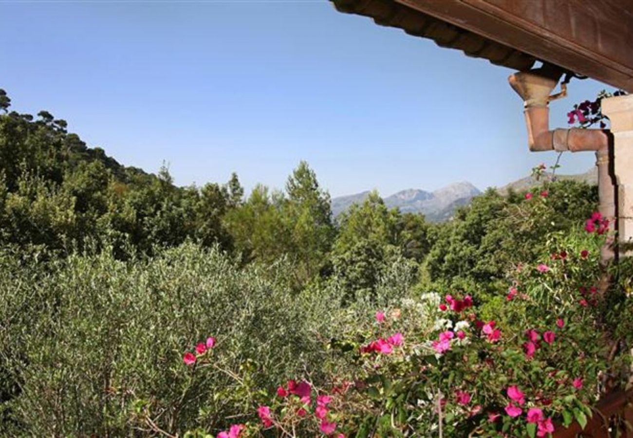 Villa in Pollensa - Can Alan